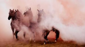 Cavalry horses and their riders are exposed to smoke as members of the Dutch cavalry undergo a stress test at the beach in Scheveningen, the Netherlands, Sept. 14, 2015. The horses and riders are tested with gunfire, music and smoke for the next day's parade in The Hague, including the King and Queen in the Golden Carriage who will pronounce the Speech from the Throne, one of the main features of government policy for the coming parliamentary session. (EPA/MARTIJN BEEKMAN)